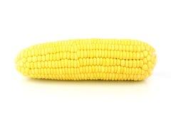 Corn. On White Background Stock Photos