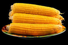 The corn Stock Images