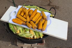 Boiled corn cobs Stock Photography