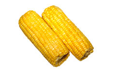 Corn. Cob isolated on the white Royalty Free Stock Images