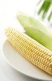 Corn. On a plate, shallow depth of field Stock Photography
