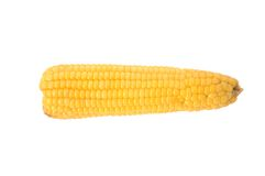 Corn. Isolated fresh corn with white background royalty free stock photos