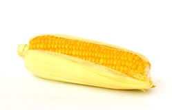 Corn. Isolated on white background Stock Images