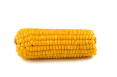 Corn. The particles full of fresh corn Royalty Free Stock Images