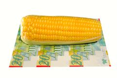 Corn. Corn On The Cob And Twenty Israel Shekel Bills Royalty Free Stock Photos
