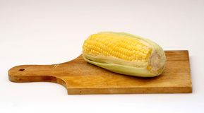 A corn. On a plate Stock Photography