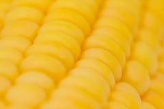Corn abstract Stock Photos