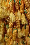 Corn accessory Royalty Free Stock Photos