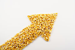 Corn Arrow. A pile of corn kernels arranged into an up arrow to reflect the high price of corn stock photos