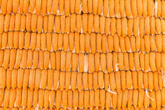 Corn backgroun, pile of corn. Ripe corn, dried corn Royalty Free Stock Images