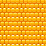 Corn background 01 try Royalty Free Stock Photos