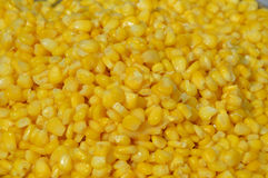 Corn background. The yellow background of cook corn Stock Photo