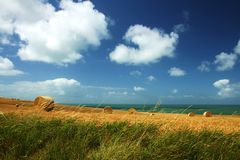 Corn bales with beautiful sea sight Stock Images