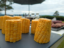 Corn for the barbecue party Royalty Free Stock Photos