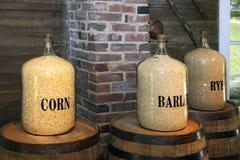 Corn, barley and rye Stock Photography