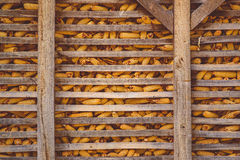 Corn barn on the farm Royalty Free Stock Images