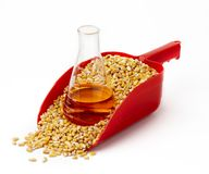 Corn-based ethanol still life. A beaker of ethanol sits in a red scoop filled with corn kernals-shot on white with soft shadows and space for copy Royalty Free Stock Photos