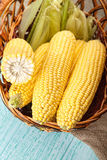 Corn in the basket Stock Photography