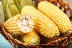 Corn in the basket Royalty Free Stock Photos