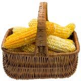 Corn basket. Royalty Free Stock Photography