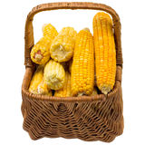 Corn basket. Stock Photo
