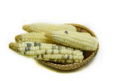 Corn White. Corn In the basket isolated on white background Stock Images