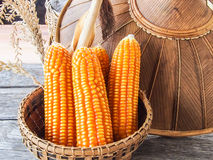 Corn in basket, on wooden table Stock Images