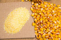 Corn beans Royalty Free Stock Images