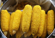 Corn boil. Details of corn boil in Thailand royalty free stock photos