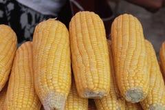 Corn boil in the market. Corn boil in the market stock photography