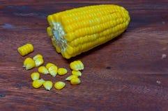 Corn boil. Stock Photography