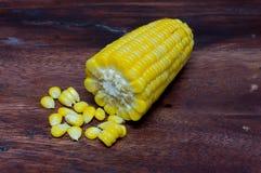 Corn boil. Stock Images