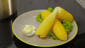 Corn boiling in pot. Boiled corn on a plate with butter stock video footage