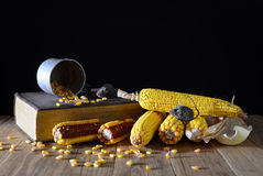 Corn and book Stock Images