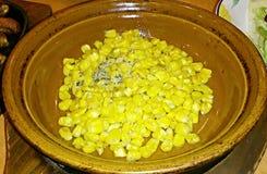 Corn Stock Image