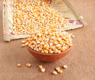 Corn in a Bowl Stock Image