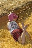 Corn Box Royalty Free Stock Photo