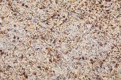 Corn bran. Waste from processing of corn. Mixed different grain. Spilled bran. stock images