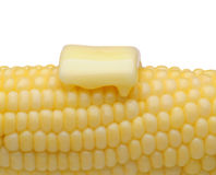 Corn and Butter Closeup. Closeup of an ear of corn with a pat of melting butter. Horizontal format on white royalty free stock images