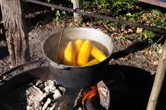 Corn in the cauldron Stock Images