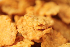 Corn Cereal. Golden Flakes of a Corn Cereal up close Royalty Free Stock Image