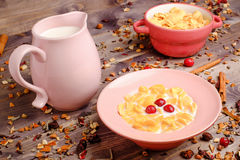 Corn cereals with milk. Corn cereals in the pink plate with milk Stock Photos