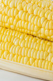 Corn closeup Stock Images
