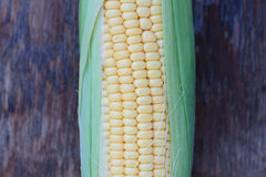 Corn. Stock Photos