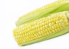 Corn on Cob Royalty Free Stock Photography