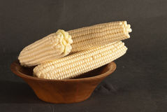 Corn on the cob. White mealies is a summer grain which is grown in Africa as a staple food Stock Photos