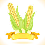 Corn On The Cob. Label , banner , sticker ,logo for Corn On The Cob Royalty Free Stock Photo