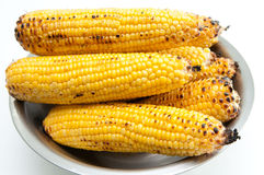 Corn on the cob. A bowl of grilled corn on the cob Royalty Free Stock Photography