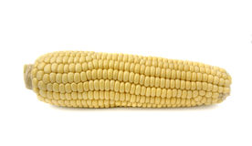 Corn cob. In a horizontal position Royalty Free Stock Photo