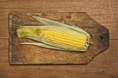 Corn on the cob. Stock Photos